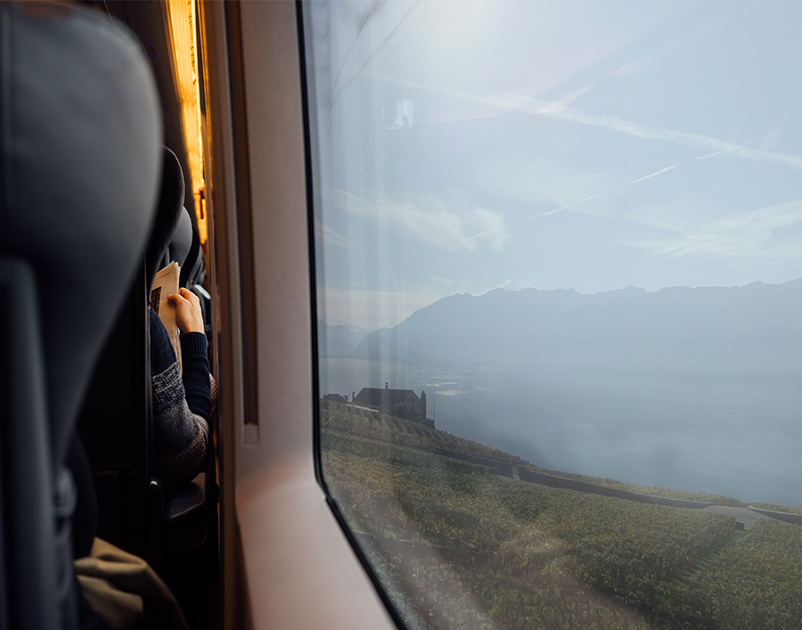 Trip by train and Geneva's lake view